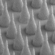 Diseñadas células artificiales liberadoras de insulina