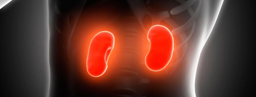 El daño en los riñones de las personas diabéticas podría empezar antes de lo que se pensaba